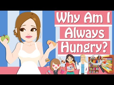 Why Am I Always Hungry? 5 Reasons Why You're Always Hungry
