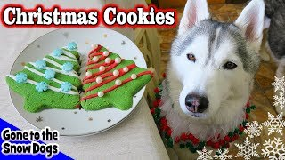 Christmas Cookies for Dogs | DIY Easy Dog Treats Recipe 90 thumbnail