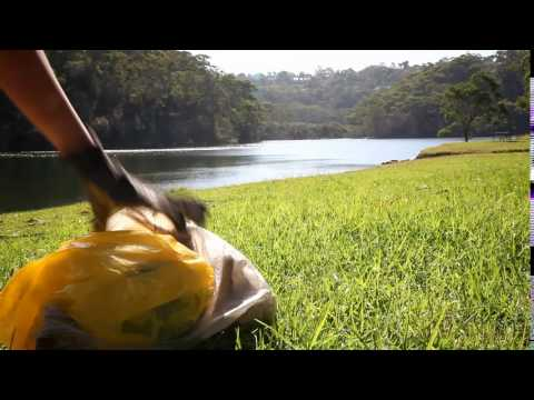 Clean Up Australia Day 2017 - Register a site today!