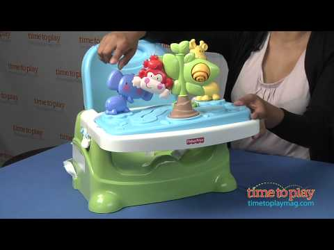 Discover N Grow Busy Baby Booster From Fisher-Price