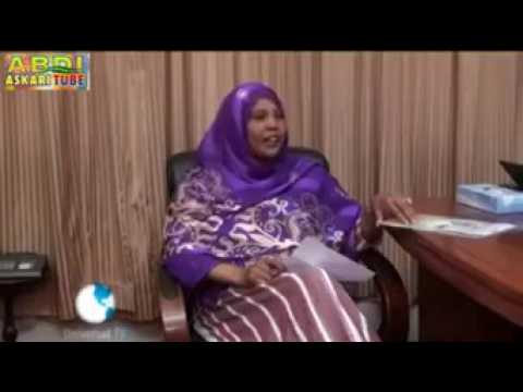 Aden Bare Duale On County Governments, courtesy A.A