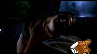 Boa vs Python - Snake Love