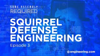 Squirrel Defense Engineering