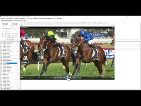 Racing Review - September 24 - Rosehill and Caulfield