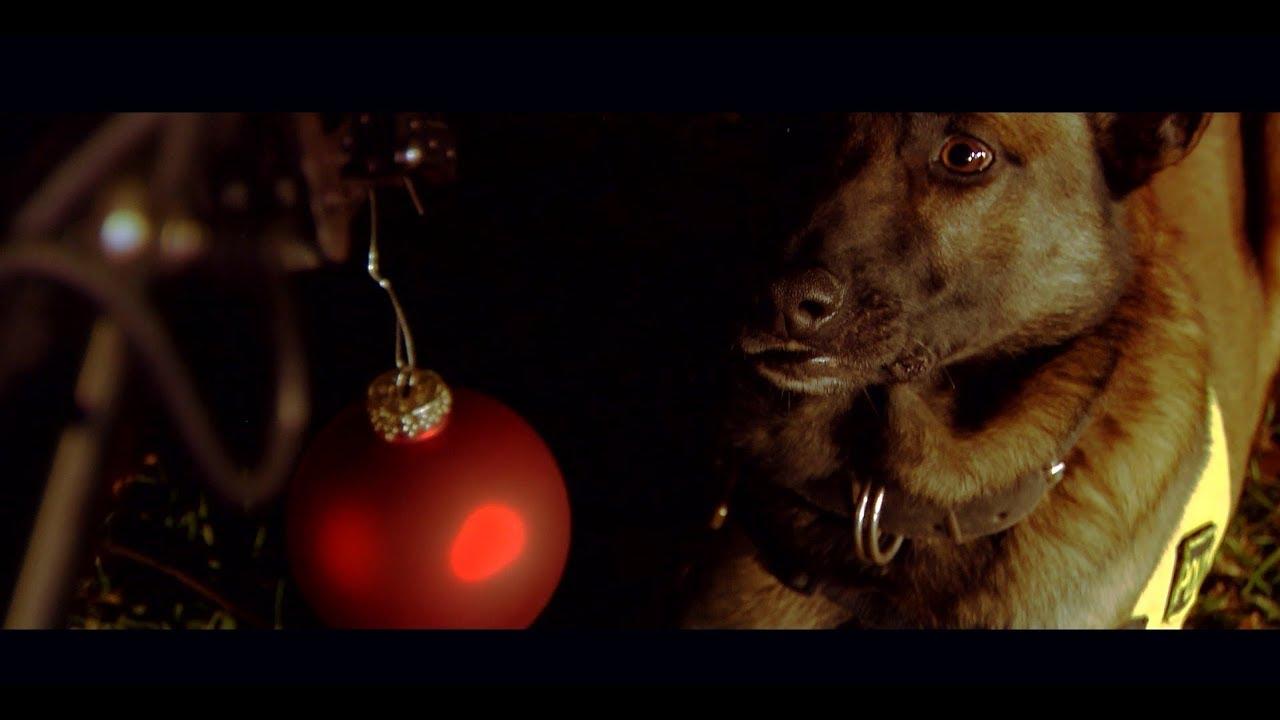 Χριστουγεννιάτικο εορταστικό video