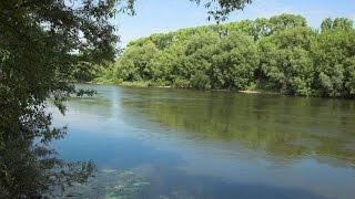 Отчёт с рыбалки. Рыбалка на Дону.(Отчёт с рыбалки. Рыбалка на Дону. Отчёт с рыбалки в начале августа на реке Дон., 2016-08-07T20:07:18.000Z)