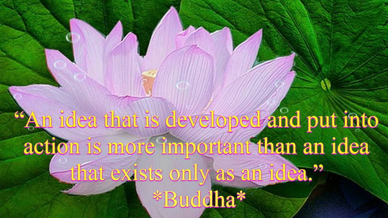 Buddhas Quotes Love And Practice Youtube