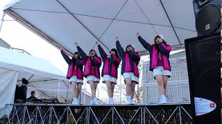 2018明治安田生命J1リーグ/セレッソ大阪 第33節 vs.柏レイソル @キン...