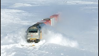 Фото L VE Train 24   Cab View   Live View