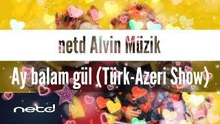 netd Alvin ve sincaplar (Ay Balam Gül- Türk&Azer)