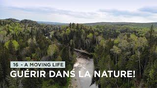 16 - S'ANCRER DANS LA NATURE POUR GUÉRIR SES BLESSURES! 🌲 - (Marston, Québec)