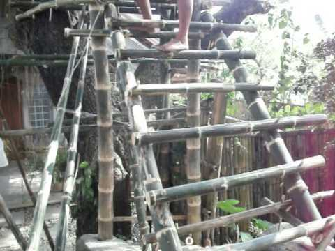 Update on the Tree House Restaurant - Life in the Philippines