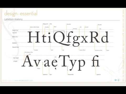 23  Design Principles - Typography,  Letter form anatomy