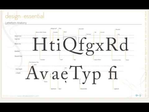 23 Design Principles - Typography, Letter form anatomy - YouTube