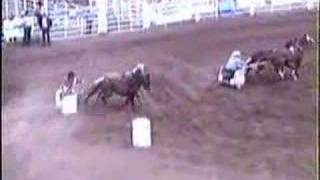 Pony Chariot Racing Rainmaker Rodeo 2000