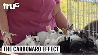 The Carbonaro Effect - Overbreeding Bunny Reveal