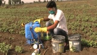 Copy of Preparation of Weedicide Solution Access Guna Madhya Pradesh