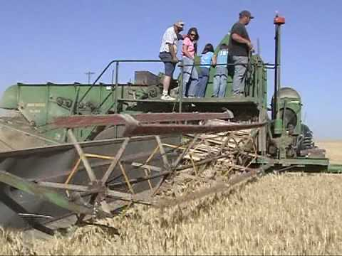 gleaner combine vintage pull type