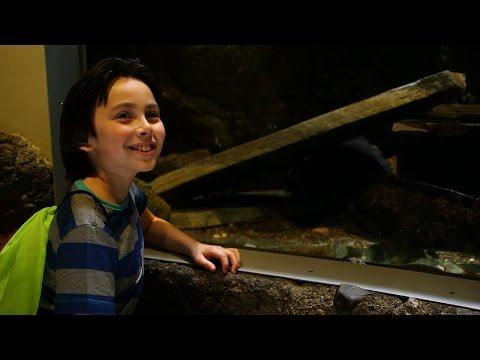 National Amphibian Conservation Center | DPTV Digital Adventure