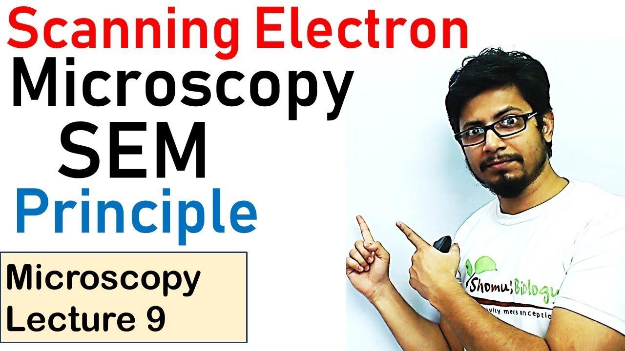 Download Scanning electron microscope principle working (SEM)