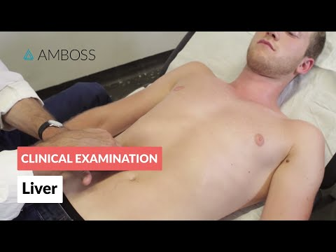 Examination of the Liver  - Clinical Examination