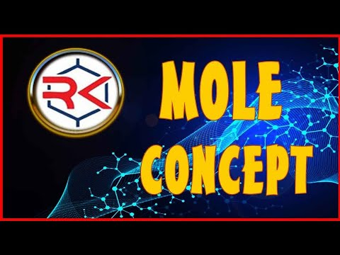 The Mole Finale 2021