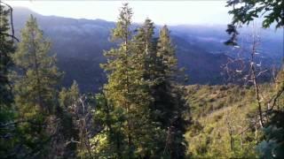 North Mingus Trail