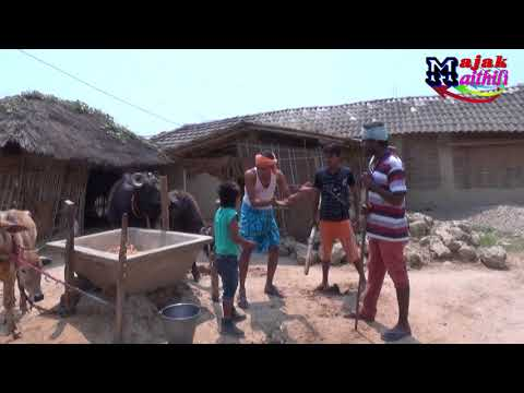 बैहरा खन्दान/मैथिली सुपर कोमेडी Majak Maithili Comedy