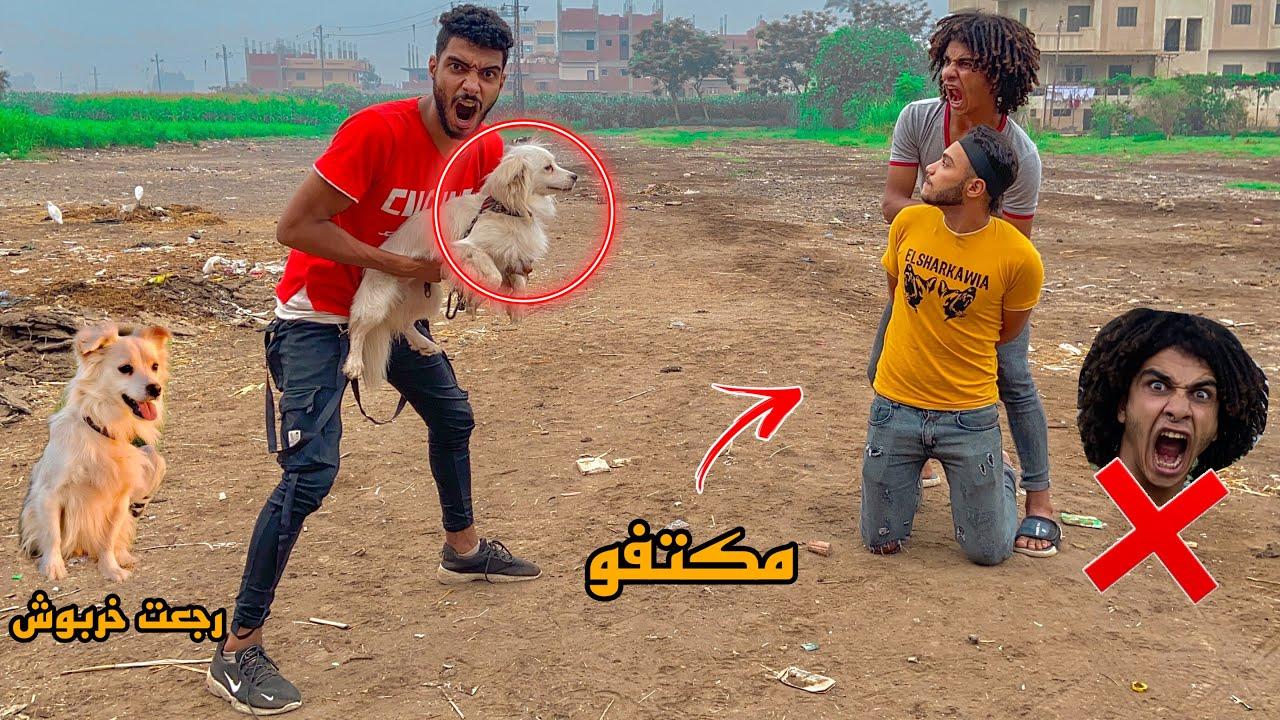رجعت الكلب بتاع صحبي بالتهديد علي شان انقذ صحبي من اديهم ؟!