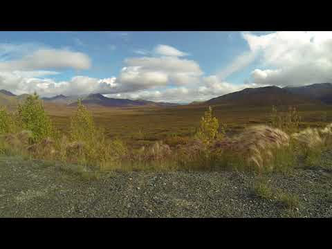 Phonography : Gates Of The Artic NP, Artic Circle, Alaska (68.050395,-149.623712)