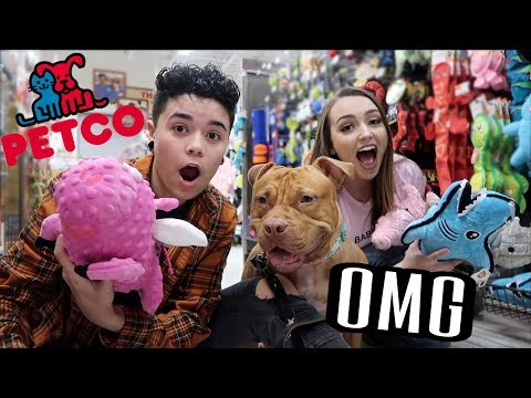 Buying Our Dog EVERYTHING She Touches!