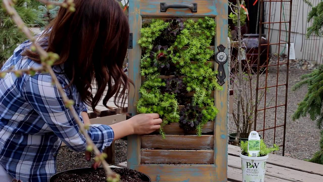 Build A Succulent Wall Planter Youtube