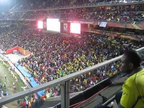 Brazillian fans celebrating at a Fifa 2010 match in Johannesburg