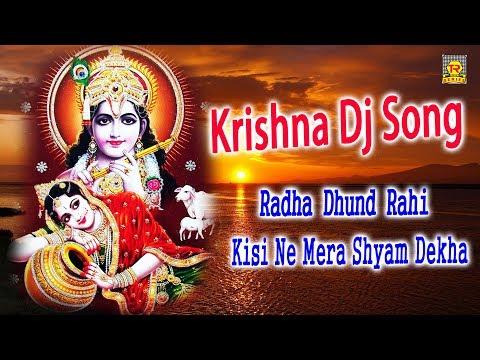 Krishna Dj Song — Radha Dhund Rahi Kisi Ne Mera Shyam Dekha
