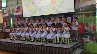 感恩的心-柏朗思观澜湖国际学校幼儿园