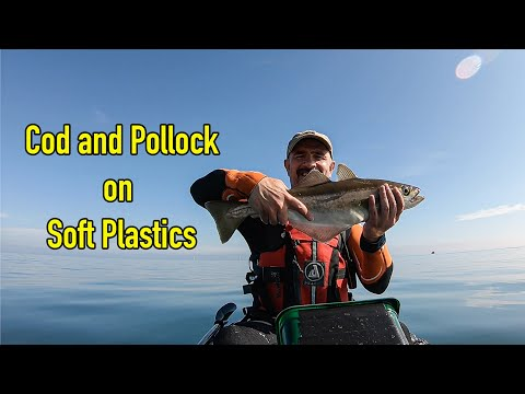 Kayak Fishing Whitley Bay For Cod And Pollock