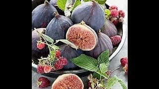 Figs; New Touchpad Harvest Right 2015 Freeze Dryer Dried Nectarine Pumpkin Pie Filling Snacks Fruit