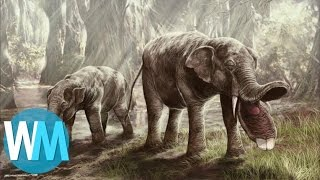 Top 10 des CRÉATURES préhistoriques les plus ÉTRANGES !