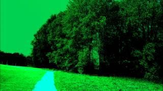 GUSTAV MAHLER - WO DIE SCHONEN TROMPETEN  BLASEN - ANNE SOFIE VON OTTER -