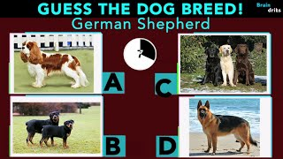 CAN YOU GUESS THE DOG BREED? | ANIMAL QUIZ |