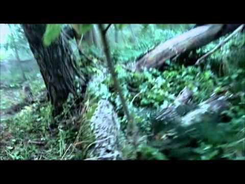 Виталий Волк - День Как День - скачать бесплатно песню в mp3