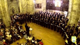 ODA A LA ALEGRÍA   Himno de Europa de Beethoven