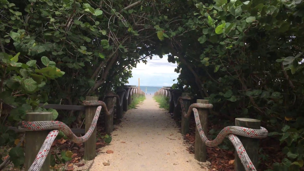 Movies Filmed In Cocoa Beach Florida