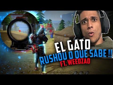 EL GATO ADORA O CHEIRINHO!!! DO RUSH É CLARO Ft. WEEDZAO - SHAZAN