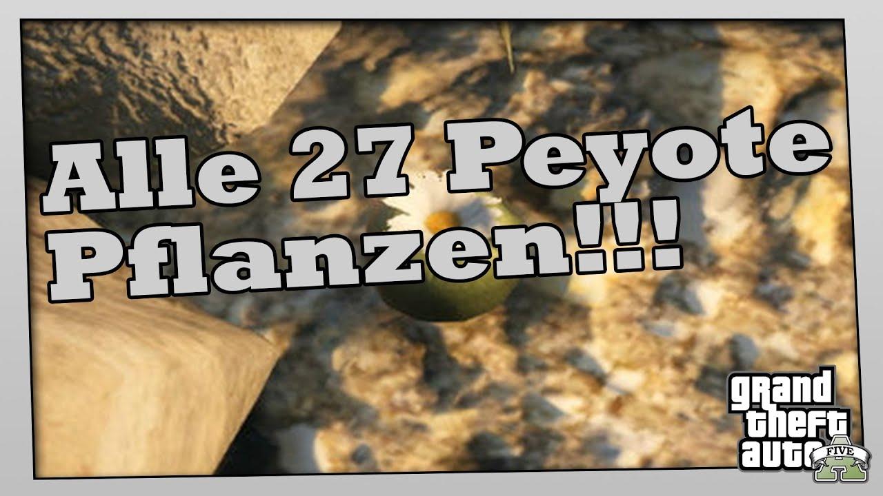 Gta 5 Alle Peyote Pflanzen
