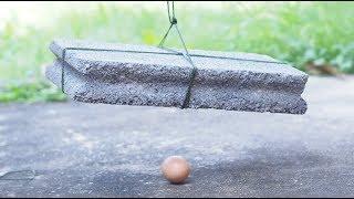 หิน-vs-ไข่