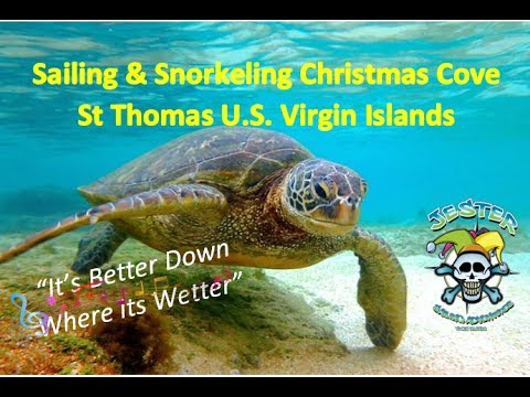 Snorkeling & Sailing Christmas Cove Great St James US Virgin Islands Jester Sailing Adventures