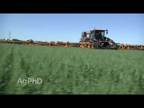 High Yield Wheat Tips #984 (Air Date 2-12-17)
