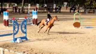 Aupyum de Beauval & Léa Weber Spé 110 Fontainebleau SF 25/10/15