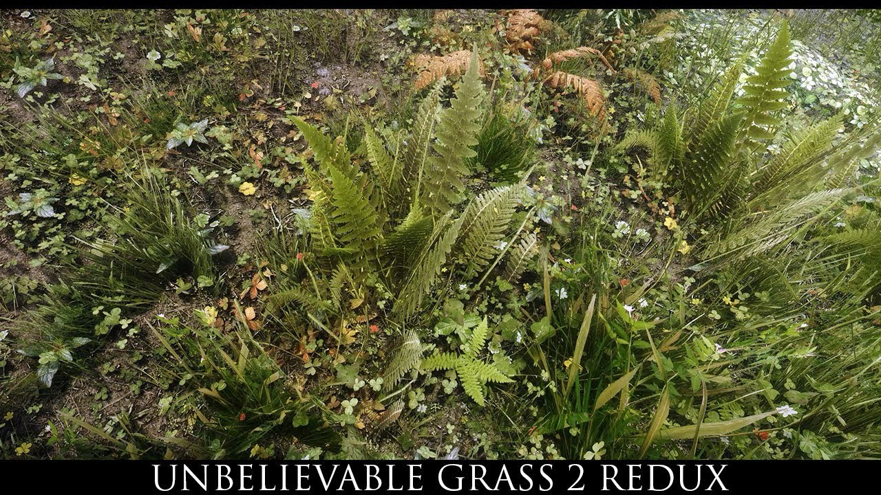 Skyrim Mods: Unbelievable Grass 2 Redux by hodilton
